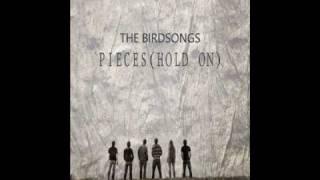Watch Birdsongs Pieces video