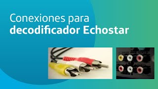 Mandroid Echostar - \