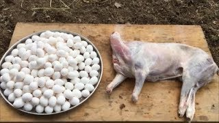 Cooking a Lamb with 200 Eggs - Wish you all a Happy New Year