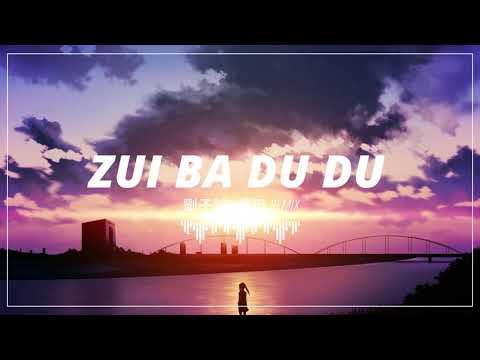 Zui Ba Du Du Remix - 劉子璿 - 嘴巴嘟嘟 ✗ Nhạc Gây Nghiện TIKTOK Hay Nhất 2018