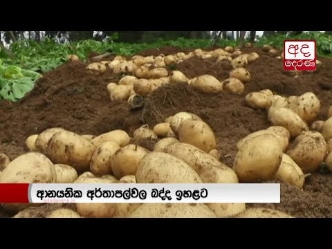 tax hike on potato i eng