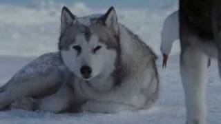 download lagu Gregorian-moment Of Peace Vs Antarktika gratis