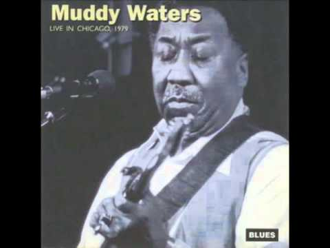 Muddy Waters - live in Chicago 1979 - Caldonia
