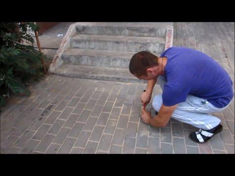 Hombre rescata a una perra atrapada bajo el suelo - Man rescues a dog trapped underground