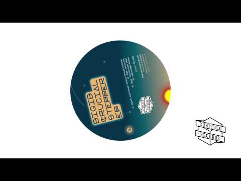 Digid feat Junior Dread - Guide Us Through The Storm (Alpha Steppa Remix)