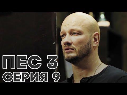 Сериал ПЕС - все серии - 3 сезон - 9 серия - смотреть онлайн