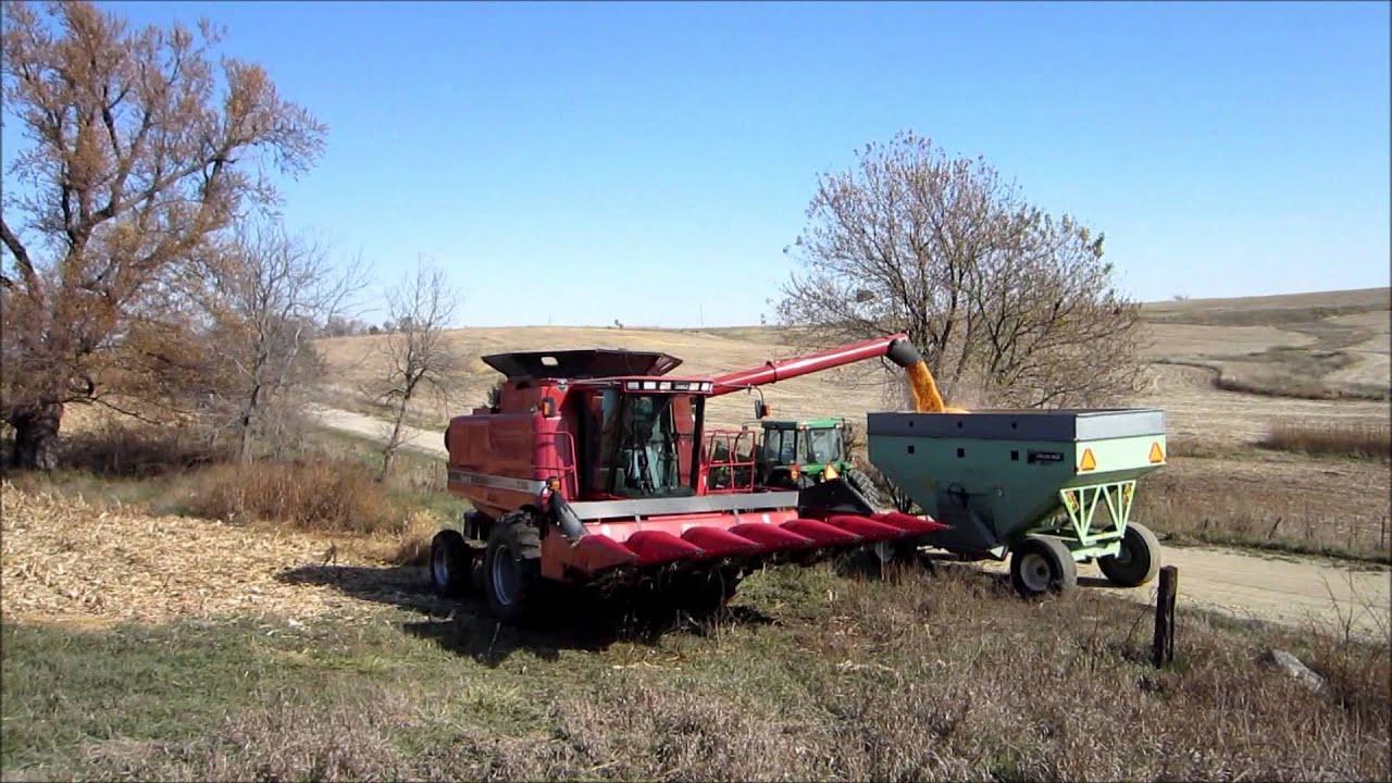 johnson family farm case Case opinion for mt supreme court johnson farms incorporated v   the family farm was operated as a corporation—johnson farms, inc dora and.