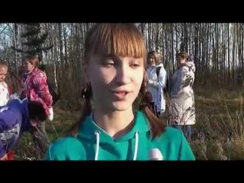 Десна-ТВ: День за днём от 13.10.2016
