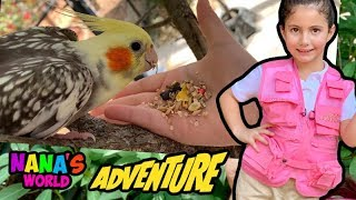 As Aventuras de Nana - Alimentando os pássaros no Zoológico - Nana's World Adventure