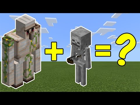 I Combined an Iron Golem and a Skeleton in Minecraft - Here's What Happened...