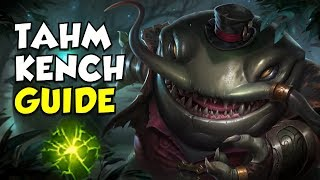 Tahm Kench Support Guide and Build - Climb to Platinum ep.4 - League of Legends