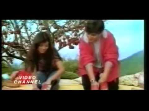 Mere Chunar Ud Ud Jaye   Best Of Falguni Pathak 1