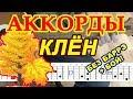 Клен Аккорды Синяя птица Разбор песни на гитаре Бой Текст mp3
