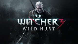 The Witcher 3: Wild Hunt GTX 550ti