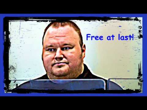 Kim Dotcom Megaupload released on bail