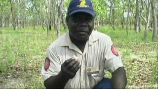 Outback Australia, Darwin to Adelaide Travel Video Guide, Meet a Local Travel Series