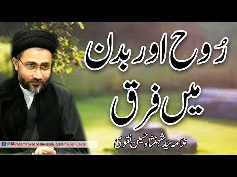 Different in spirit and body by Allama Syed Shahenshah Hussain Naqvi