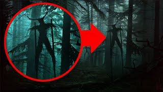 """The Forest of a Thousand Wrong Turns"" Creepypasta"