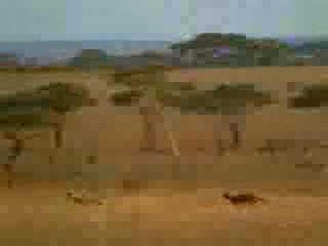 Ladrón en Africa