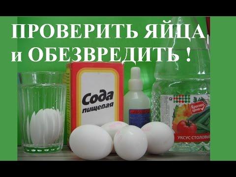 Опасный сальмонеллез – сколько варить яйца