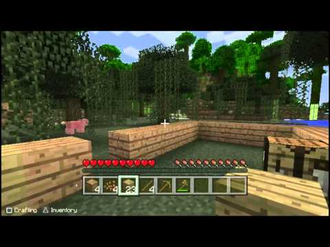Let's Play Minecraft Episode 1: Let the Journey Begin  PSVITA