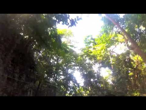 Jamaica - Mystic Mountain | Jungle Bobsled | GorPro Hero 3 Silver