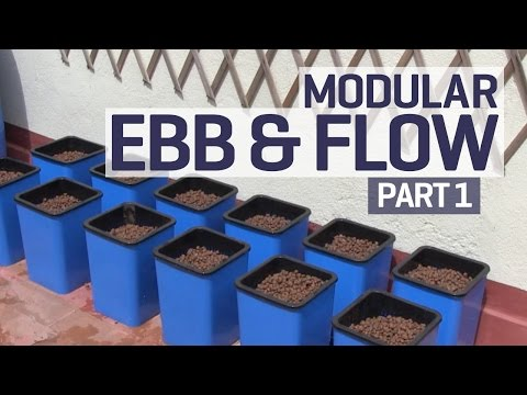 How To Set Up An Ebb And Flow   Flood And Drain Hydroponics Growing System   Part 1 Of 6