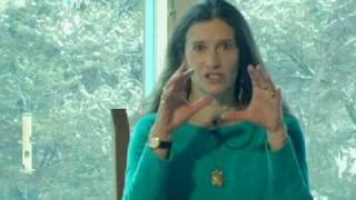 Shaman Sandra Ingerman on Shamanism
