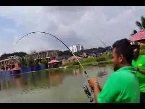 fishing big fish in Malaysia 2