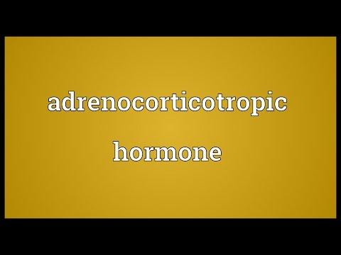 Header of Adrenocorticotropic hormone