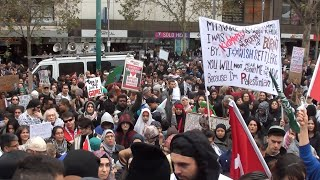 Rally For Palestine, End the Gaza War