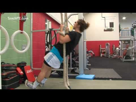 Weight Training Fitness Workout - Inverted Row on Ropes Image 1