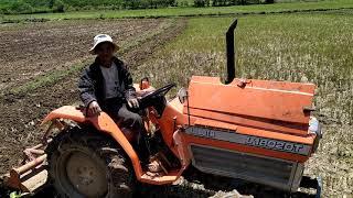 Máy cày kubota 1802 mua 75 triệu xới đất 5 năm chưa đụng con ốc nào.