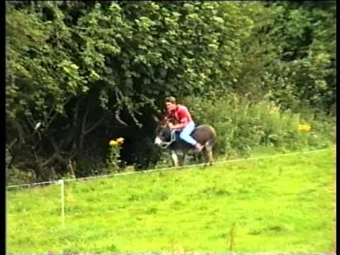Misc Traditional - Riding On A Donkey