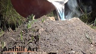 Largest Aluminum Fire Ant Colony Cast So Far (Cast #072)