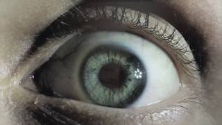 Human Drama:  The Liar Inside