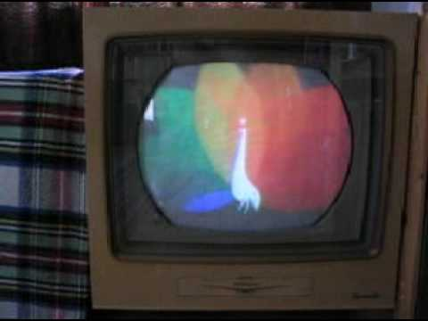 Rca Color Tv Set From 1956 With Nbc Logo
