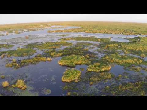 El segundo humedal más grande del mundo en increíbles imágenes desde un drone
