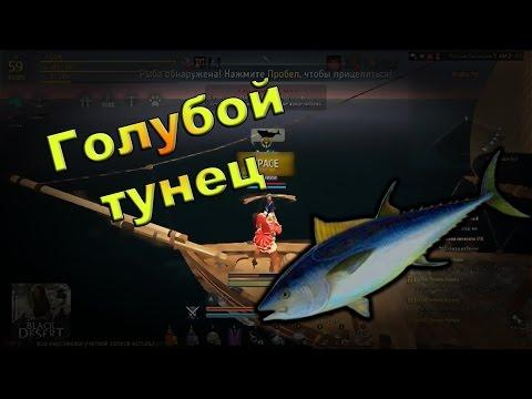 рыбная ловля в бдо