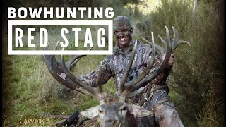 Epic New Zealand Red Stag Bowhunting!! Bowmar Bowhunting