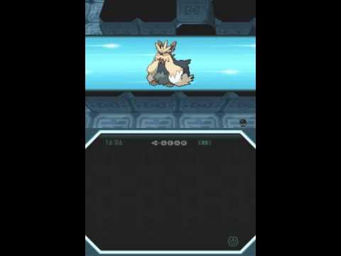 Video pokemon noire