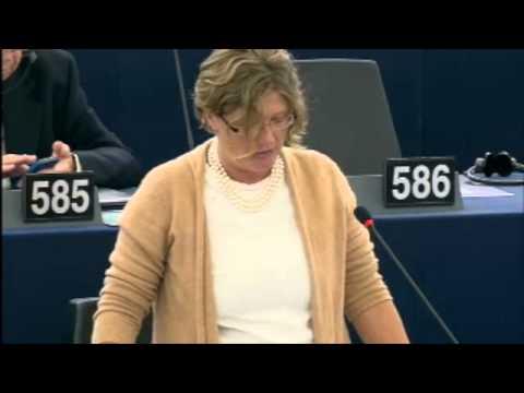 Gál Kinga felszólalt ez EP plenáris ülésén az emberi jogi jelentés vitájában