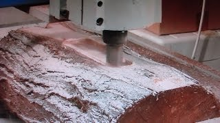 55 CNC router making *$30,000* 3D Art Décor picture from a log