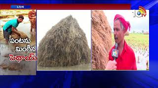 Cyclone Phethai causes crop loss in Krishna district | Phethai Strom Updates