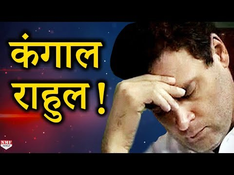 Congress के शहजादे Rahul हुए गरीब, देखें ये रिपोर्ट