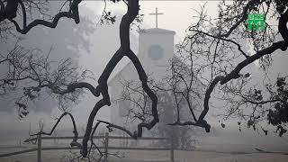 Hàng loạt sao hollywood mất nhà, bỏ của chạy lấy người vì hỏa hoạn| VTC14