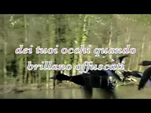 Franco Battiato - Invito Al Viaggio