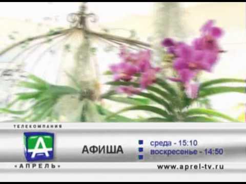 Промо Афиша 05 02