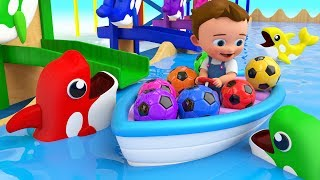 Dolphins Color Balls Tumbling Toy Set 3D - Little Baby Learning Colors for Children Kids Educational