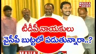 Magunta Srinivasa Reddy Will Quits The TDP?